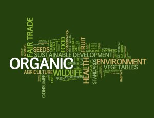 Sustainable-Food-Words