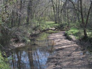 Third Fork Creek, recently adopted by NWEI Partner South Durham Green Neighbors after a Discovering A Sense of Place discussion course